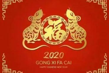 Bleib gesund mit Qigong
